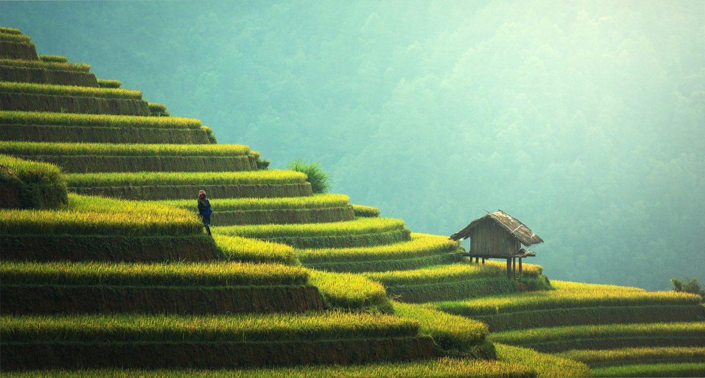 Reisvisum naar Myanmar online aanvragen via VisumBuitenland.be